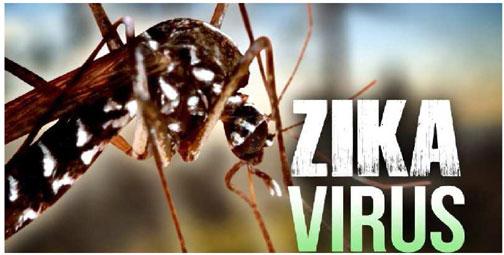 zanzara-virus-zika